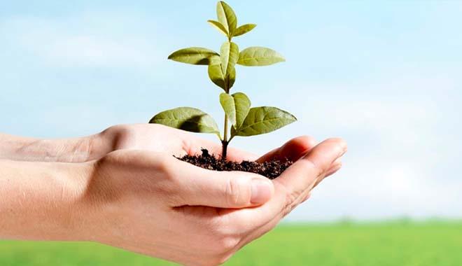 Covestro-PBB Gelar Lomba Kelestarian Lingkungan