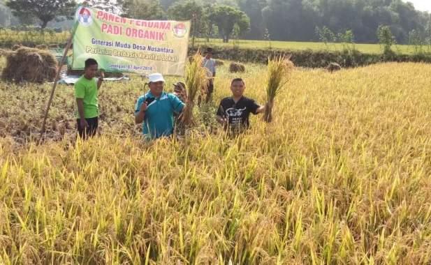 Tani Organik Lebih Hemat Biaya, Kian Sejahterakan Petani