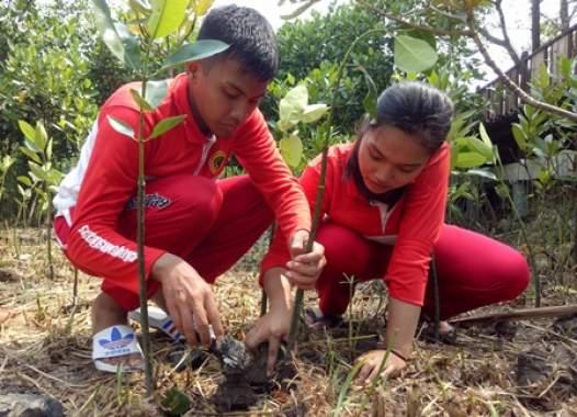 Studi Observasi, Siswa SMATAG Tanam 1.000 Mangrove